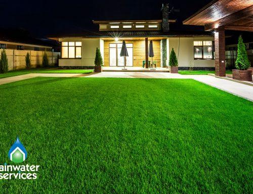 Best Lawn Management Practices