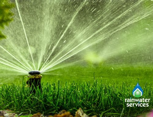 Should You Get An Irrigation System?